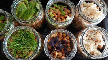 納豆の作り方 海外編 菌セレクション